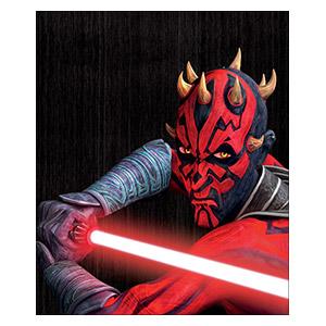 Star Wars. Размер: 25 х 30 см